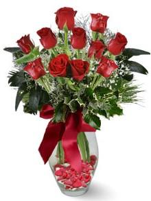 9 adet gül  Konya çiçek yolla  kirmizi gül