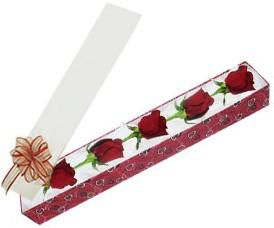 Konya çiçek yolla  kutu içerisinde 5 adet kirmizi gül