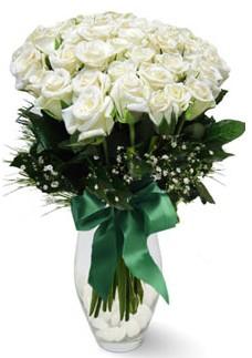 19 adet essiz kalitede beyaz gül  Konya çiçek gönderme