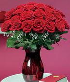 Konya internetten çiçek siparişi  11 adet Vazoda Gül sevenler için ideal seçim