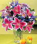 Konya online çiçek gönderme sipariş  Sevgi bahçesi Özel  bir tercih