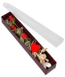 kutu içerisinde 3 adet gül ve oyuncak  Konya hediye çiçek yolla