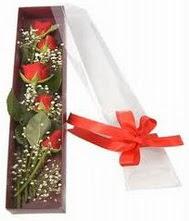 kutu içinde 5 adet kirmizi gül  Konya çiçekçi telefonları