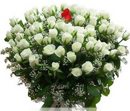 Konya çiçek yolla  100 adet beyaz 1 adet kirmizi gül buketi