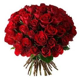 Konya yurtiçi ve yurtdışı çiçek siparişi  33 adet kırmızı gül buketi