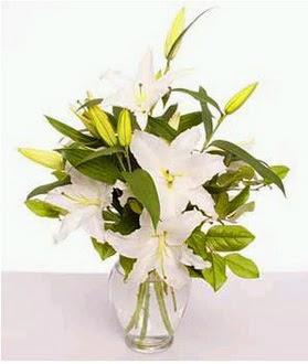 Konya çiçek mağazası , çiçekçi adresleri  2 dal cazablanca vazo çiçeği
