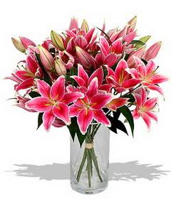 4 dal cazablanca görsel vazosu  Konya İnternetten çiçek siparişi