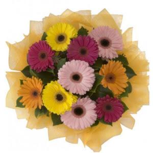 Konya hediye sevgilime hediye çiçek  11 adet karışık gerbera çiçeği buketi