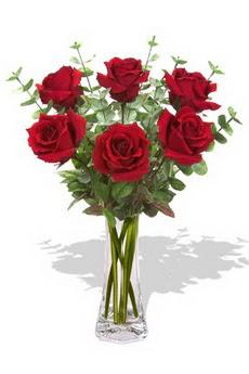Konya İnternetten çiçek siparişi  6 kırmızı gül vazosu