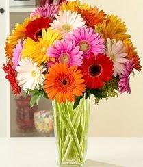 Konya çiçek siparişi vermek  15 adet gerbera çiçek vazosu