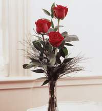 Konya çiçek yolla  Vazoda 3 adet güzel gül