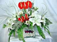 Konya online çiçek gönderme sipariş  Anthurim Kazablanka  gül