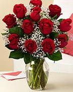 Sevgilime hediye 9 adet 1.ci kalite gül  Konya internetten çiçek satışı