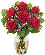 Kız arkadaşıma hediye 6 kırmızı gül  Konya çiçekçi telefonları