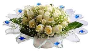 Konya internetten çiçek siparişi  11 adet Beyaz güller özel cam tanzim