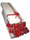 Konya kaliteli taze ve ucuz çiçekler  11 adet 1.kalite magnum güller