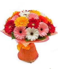 Renkli gerbera buketi  Konya internetten çiçek satışı