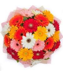15 adet renkli gerbera buketi  Konya uluslararası çiçek gönderme