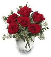 Vazo içerisinde 5 adet kırmızı gül  Konya İnternetten çiçek siparişi