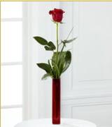 Vazo içerisinde 1 adet kırmızı gül  Konya çiçekçi telefonları