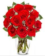 12 adet vazoda kıpkırmızı gül  Konya ucuz çiçek gönder
