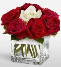 Tek aşkımsın çiçeği 8 kırmızı 1 beyaz gül  Konya çiçekçi mağazası