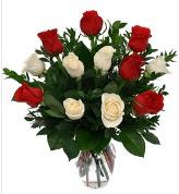 Vazo içerisinde 6 kırmızı 6 beyaz gül  Konya çiçek yolla , çiçek gönder , çiçekçi