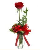 vazo içerisinde 1 adet kırmızı gül  Konya kaliteli taze ve ucuz çiçekler