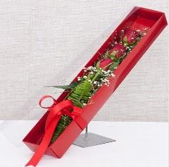 Kutu içerisinde 3 adet kırmızı gül  Konya çiçek , çiçekçi , çiçekçilik