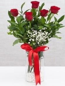cam vazo içerisinde 5 adet kırmızı gül  Konya hediye çiçek yolla