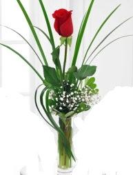 Cam içerisinde 1 kırmızı gül  Konya çiçek online çiçek siparişi
