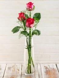 Cam içerisinde 3 kırmızı gül  Konya güvenli kaliteli hızlı çiçek