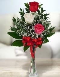 Camda 2 kırmızı 1 beyaz gül  Konya online çiçekçi , çiçek siparişi