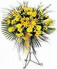Konya uluslararası çiçek gönderme  Sari kazablanka Ferforje
