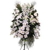 Konya ucuz çiçek gönder  Ferforje beyaz renkli kazablanka