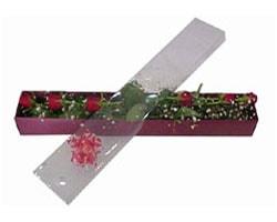 Konya internetten çiçek satışı   6 adet kirmizi gül kutu içinde