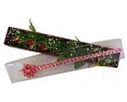 Konya çiçek yolla , çiçek gönder , çiçekçi   3 adet gül.kutu yaldizlidir.