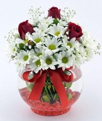 Fanusta 3 Gül ve Papatya  Konya çiçek yolla