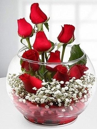 Kırmızı Mutluluk fanusta 9 kırmızı gül  Konya çiçek gönderme sitemiz güvenlidir