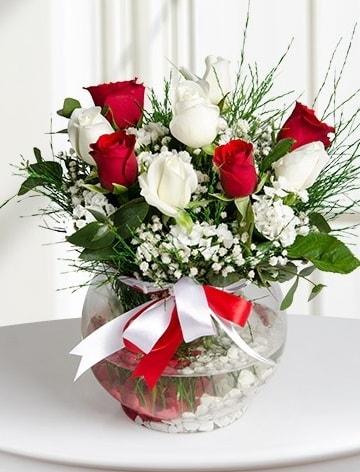 Aşk Küresi  5 beyaz 5 kırmızı gül fanusta  Konya çiçek yolla