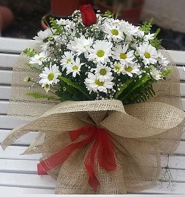 Papatya 1 adet kırmızı gül buketi  Konya çiçek gönderme