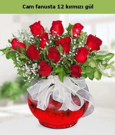 Cam içerisinde 12 adet kırmızı gül  Konya çiçek yolla