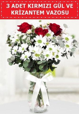 3 kırmızı gül ve camda krizantem çiçekleri  Konya çiçek mağazası , çiçekçi adresleri