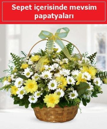 Sepet içerisinde mevsim papatyaları  Konya online çiçekçi , çiçek siparişi
