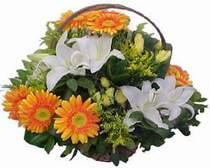 Konya 14 şubat sevgililer günü çiçek  sepet modeli Gerbera kazablanka sepet