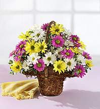 Konya çiçek gönderme  Mevsim çiçekleri sepeti